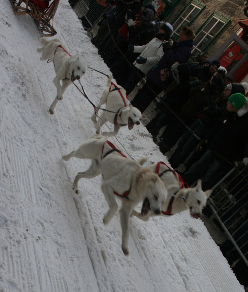 winter carnaval, winter carnival, quebec travel