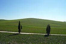 abroad tuscany expat blog