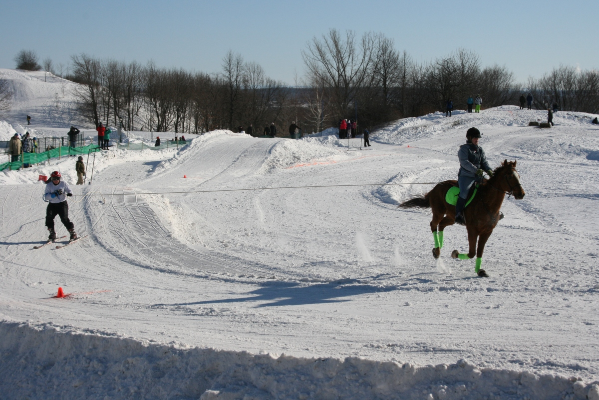 Skijoring. The next big thing in Olympic Sports.