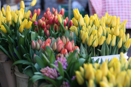 Flowers at Pike's Place Market