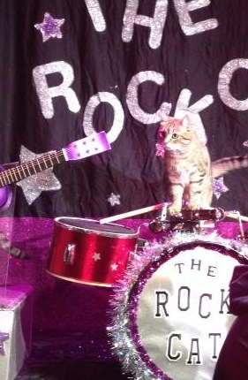 One of the Rock Cats