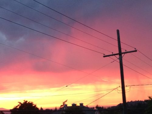 THIS does not do justice to the amazing sunset last night.