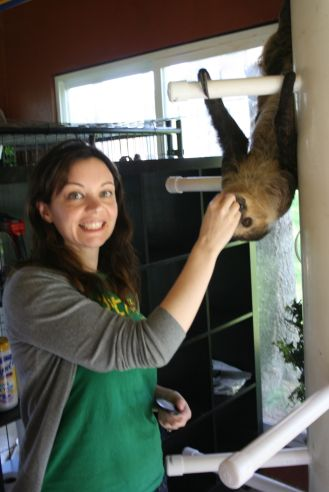 sloth-feeding_,e